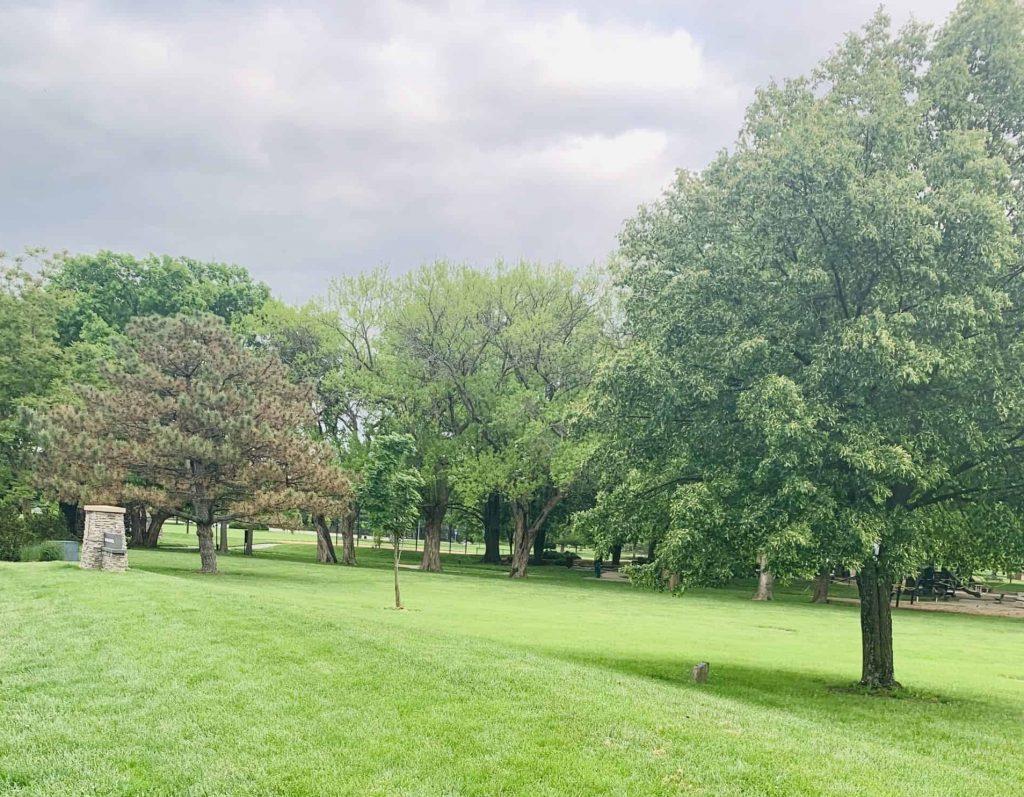 Park Nature Photo